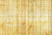 Papyrus closeup — Stock Photo