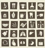 Retro anatomical icons — Stock Vector