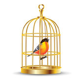 Golden bird cage with bird inside — Stock Vector