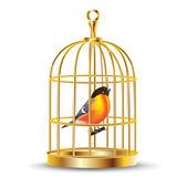 Golden bird cage with bird inside — Stock Vector