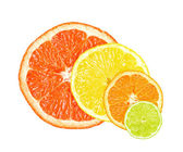 Citrus slices — Stock Photo