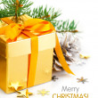 Christmas gift with bow and branch firtree — Foto de Stock