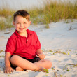 Portrait of happy child on beach with sand dunes in background — Stock Photo #10756081