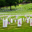 Flags decorate veterans cemetery for Memorial Day — Stock Photo #10777626