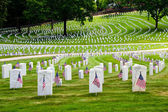 Flags decorate veterans cemetery for Memorial Day — Foto de Stock
