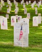 Banderas decoran cementerio de veteranos para el día de los caídos — Foto de Stock