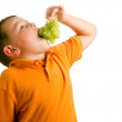 Healthy eating concept with child eating grapes isolated on white — Stock Photo