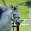 Stockfoto: Jumping event