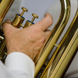 The tuba player - Stock Photo