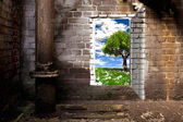 The door in the brick wall — Stockfoto