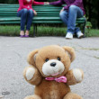Teddy bear with the couple in love — Stock Photo