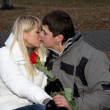 Stock Photo: Kissing couple in love with rose