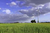 Vindkraftverk på ängen — Stockfoto