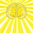 Bright Brain — Stock Vector