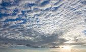 Nuvole altocumulus — Foto Stock
