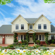 Stock Photo: House with flowers