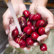 Stock Photo: Washing of fruits, cherries