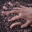 Hands of a young woman and coffee beans - Stock Photo
