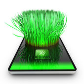 A smartphone application is growing grass — Stock Photo