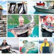 Collage of Fisherman holding a big fresh fish - Stock Photo