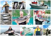 Collage of Fisherman holding a big fresh fish — Stock Photo