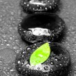 Zen stones and leaves with water drops — Stock Photo #11035337