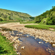 Stock Photo: Rocky riverbed of River Swale