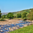 Stock Photo: Scenic view of River Swale