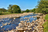 River Swale, Yorkshire, England — Stock Photo