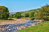 Scenic view of the River Swale — Stock Photo