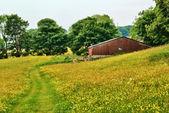 старый сарай в йоркшир-дейлс сено луг — Стоковое фото