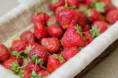 Cesta de fresa — Foto de Stock