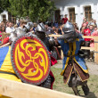 Knight battle - Stock Photo