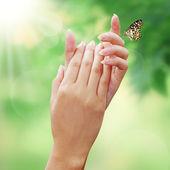 бабочка в руках женщина — Стоковое фото