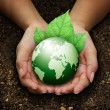 Human hands holding green earth with a leaf on soil — Stock Photo