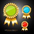 Collections colorful ribbons award — Stock Vector