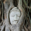 Stock Photo: Head of Sandstone Buddha