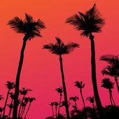 Silueta al atardecer de árboles de palma — Vector de stock