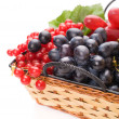 Royalty-Free Stock Photo: Fresh cranberries and grapes in basket isolated on white backgro