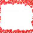 Border frame made of cranberries — Stock Photo