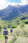 Um grupo de turistas andando em uma estrada de montanha — Fotografia Stock