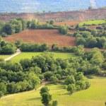 Farmland — Stock Photo #11525541