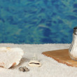 Sea salt on the beach and on the cutting board on the background of water close-up - Stock Photo