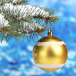 Christmas ball on the tree on blue — Stock Photo #10802133