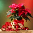 Beautiful poinsettia in flowerpot, gifts and Christmas balls on wooden table on bright background — Foto de Stock