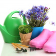 Watering can, galoshes, tools and plants in flowerpot isolated on white — 图库照片