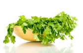 Fresh coriander or cilantro in wooden bowl isolated on white — Stock Photo