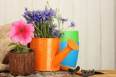 Watering can, tools and flowers on wooden background — Stock Photo