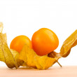Physalis on wooden table on white background — Stock Photo