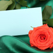 Beautiful rose on green cloth — Zdjęcie stockowe